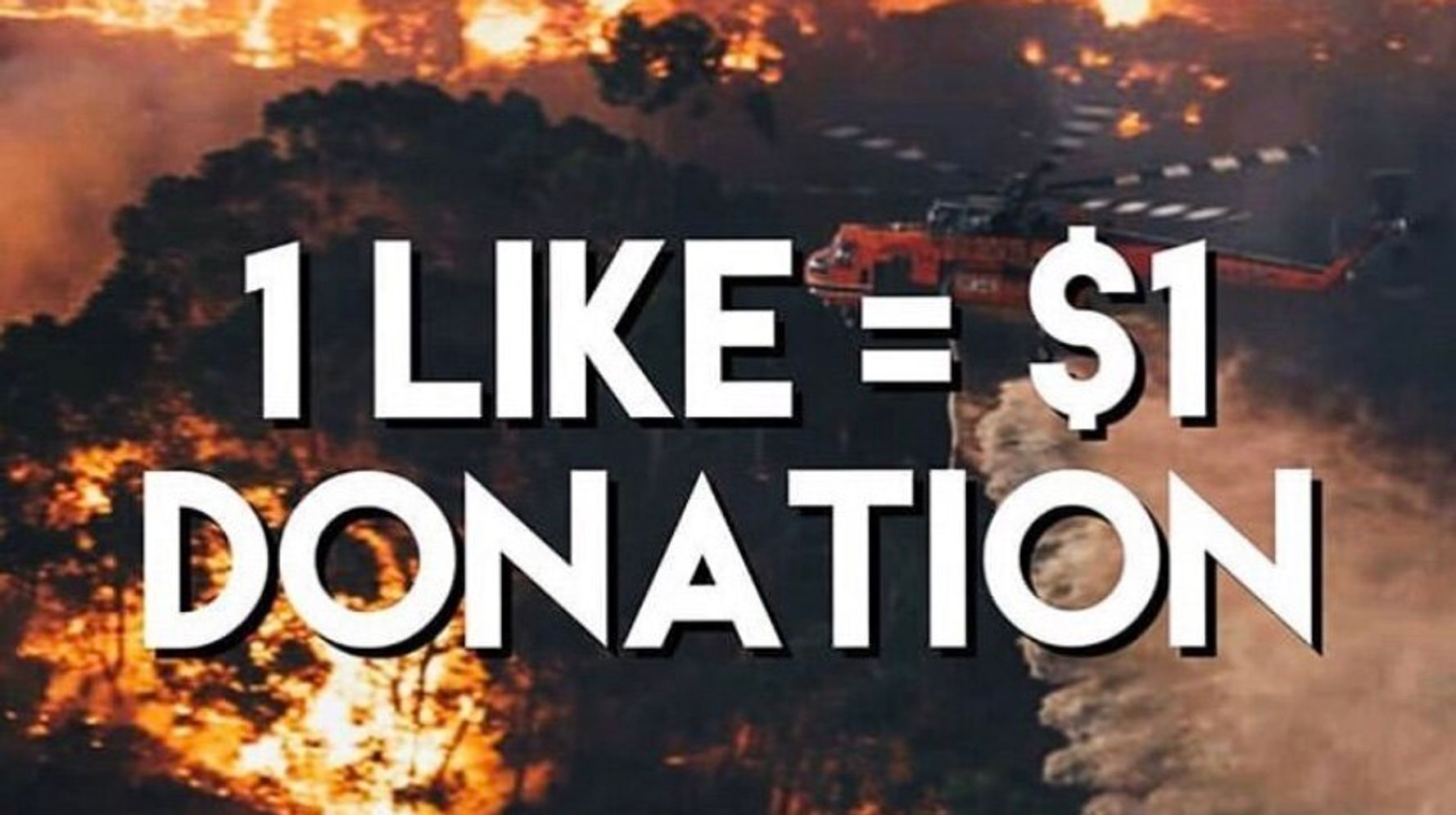 Instagram Scammers Are Exploiting The Australia Bushfires For Cash And Clout